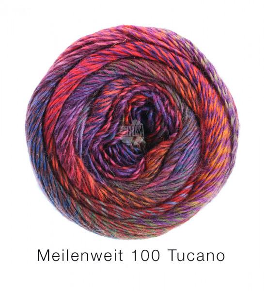 Meilenweit 100 Tucano
